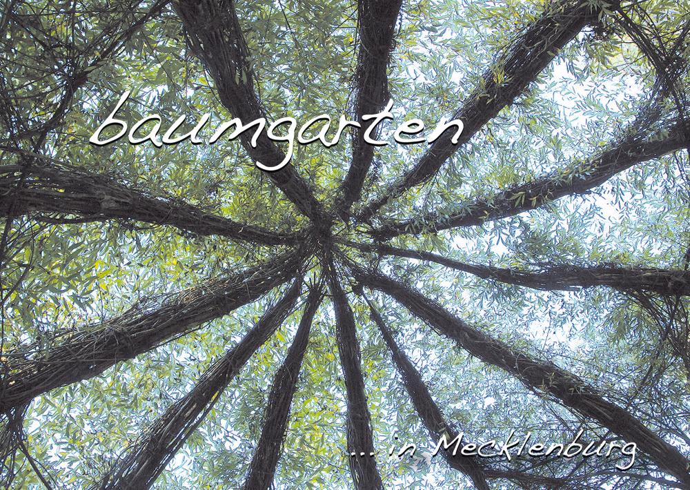 SK_inMecklenburg-baumgarten.indd