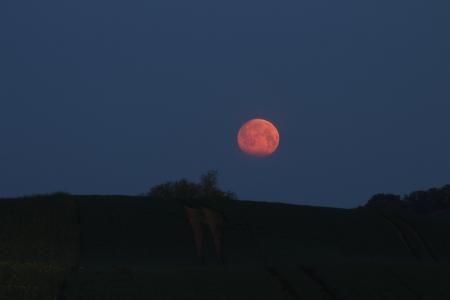 Mond rot Satow