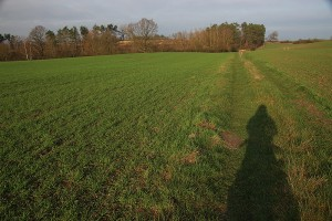 schatten in wintersonne