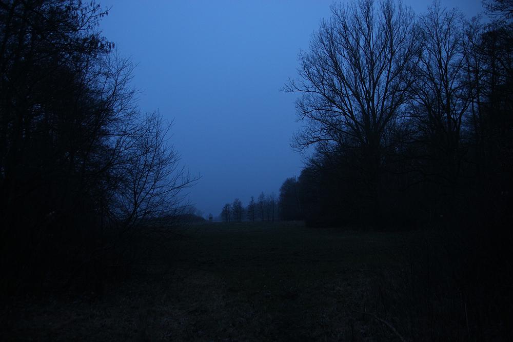 warnow hinter bützow morgens