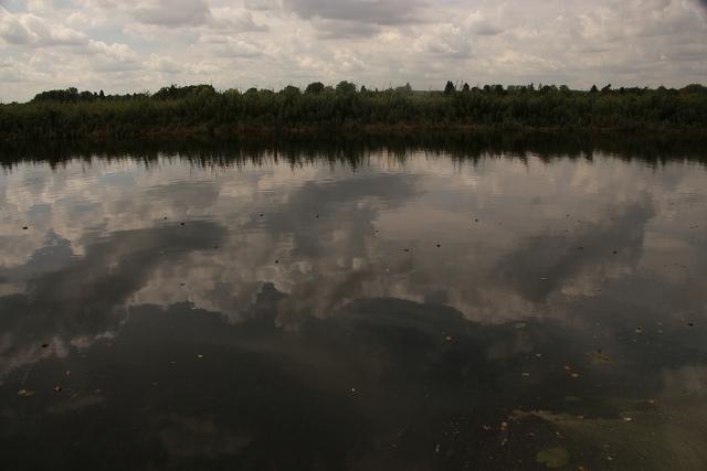 Warnow, Wolken, Warnowwasser, Algenblüte
