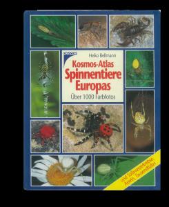 Heiko Bellmann - Kosmos-Atlas der Spinnentiere Europas