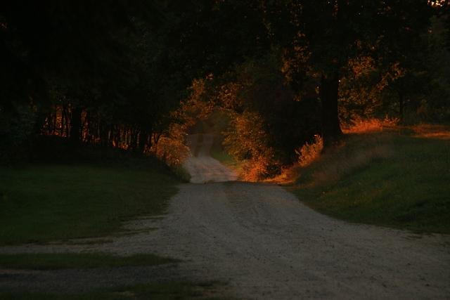 Bruchmühle, Weg, Morgenlicht