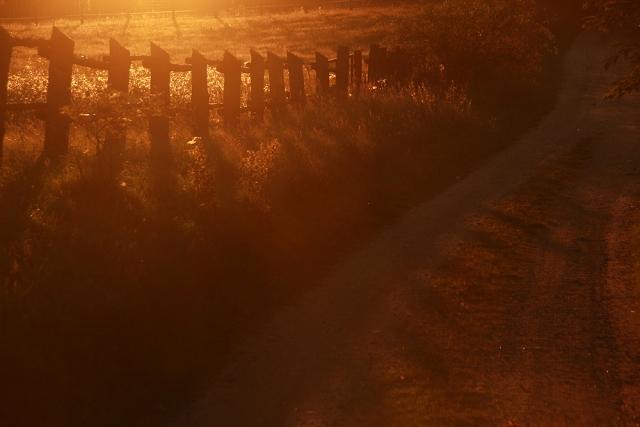 Bruchmühle, Morgenlicht