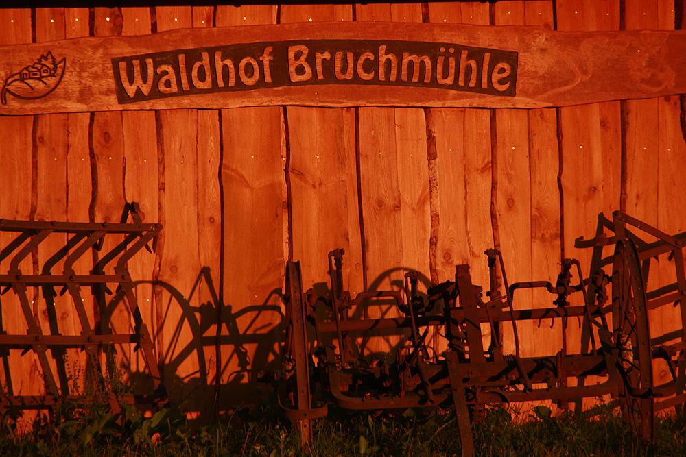 Bruchmühle,Waldhof, Morgenlicht