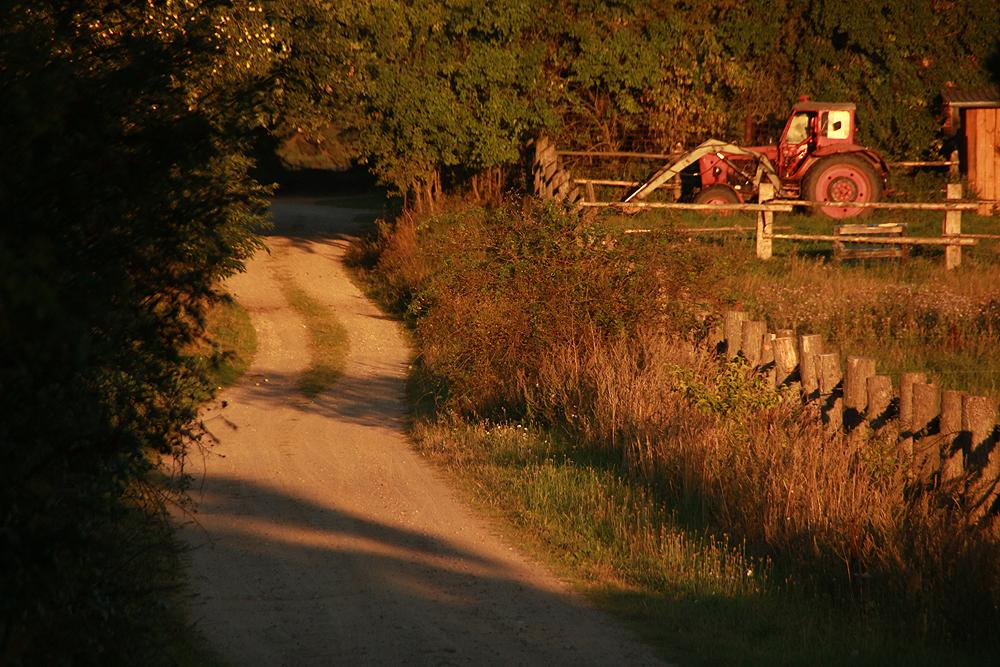 Bruchmühle, Traktor, Morgenlicht